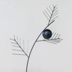 """""""Mamaku (Black Tree Fern)"""" by Gigi Gaulin"""