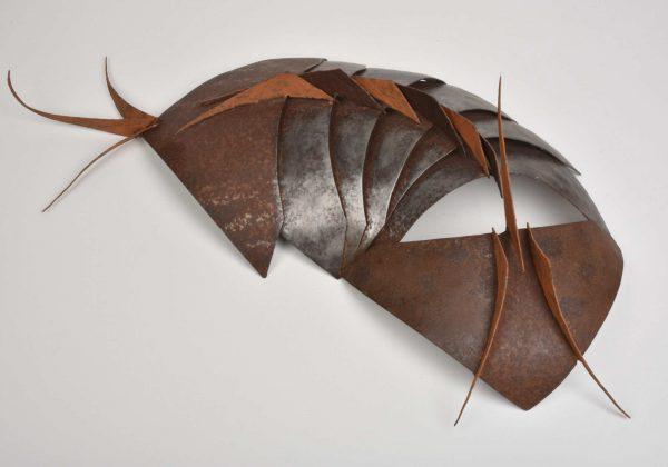 Armadillidiidae by Gigi Gaulin